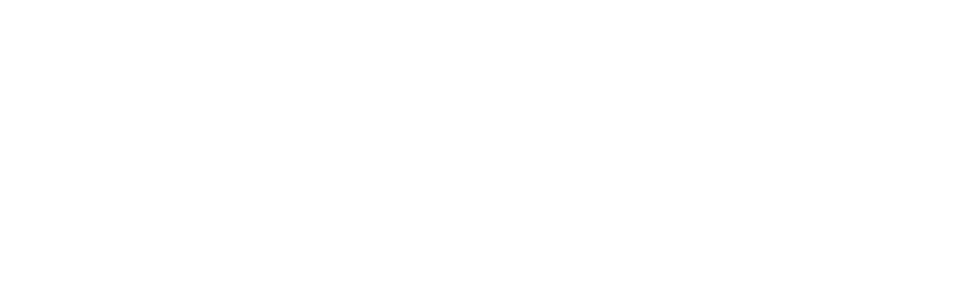 IEEE-CS USF Student Chapter